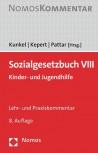 Sozialgesetzbuch VIII. Lehr- und Praxiskommentar