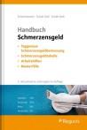 Handbuch Schmerzensgeld