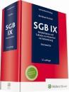 SGB IX Kommentar